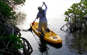 Maiden SUP Voyage